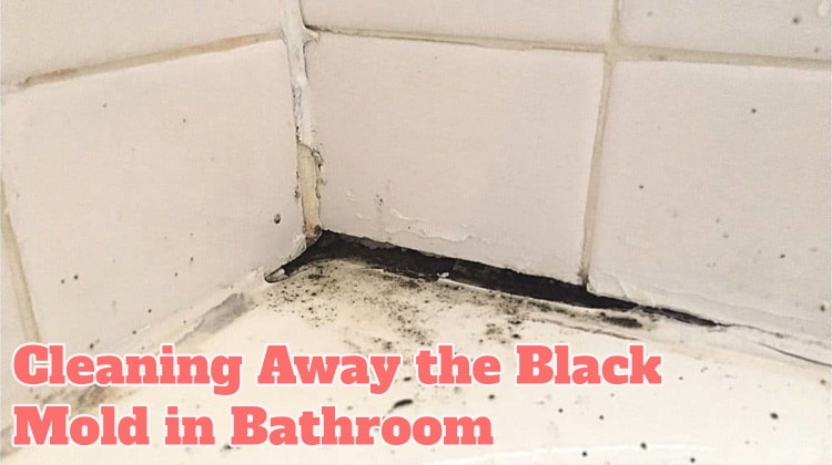 Cleaning Away the Black Mold in Bathroom